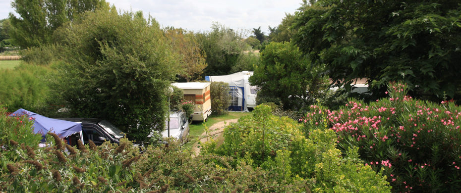 Camping la Campière for your holidays on the island of Oléron