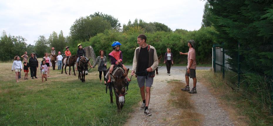 La ferme équestre du camping sur Oléron