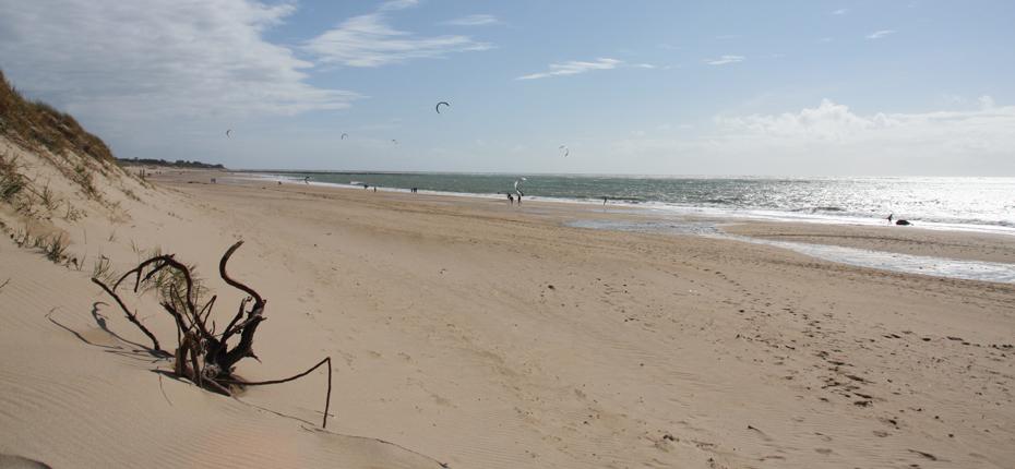 Baladez vous à la plage non loin du camping sur Oléron