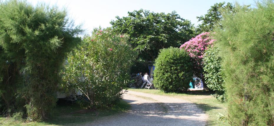 Profitez de votre emplacement au camping sur Oléron