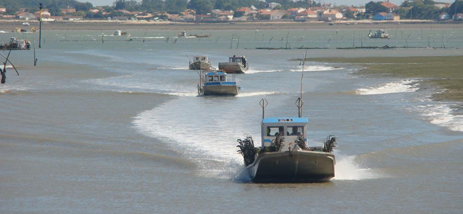 Les bateaux de pêche ostréicole au Château d'Oléron