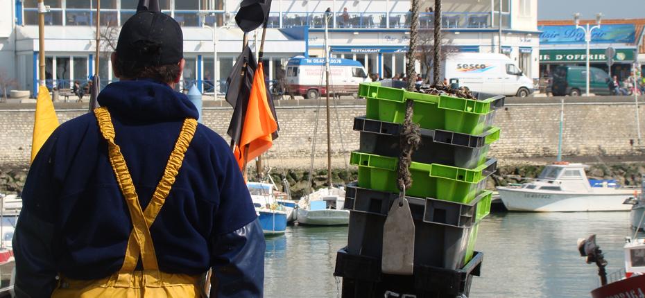Le port de pêche de la Cotinière à Saint Pierre d'Oléron