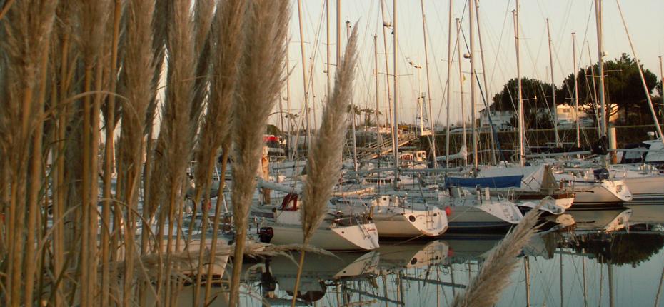 Découvrez le port de plaisance de Boyardville à Saint Georges d'Oléron