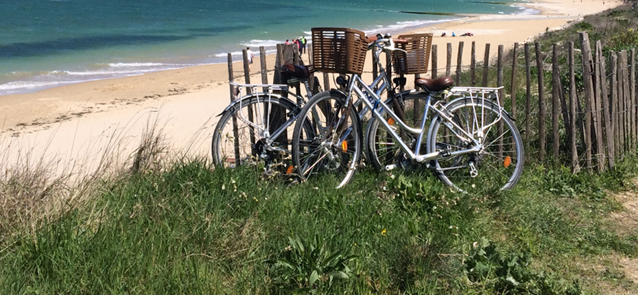 Louez votre vélo au camping à Saint Denis d'Oléron pour profiter de vos vacances